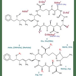Microcystins/Nodularins