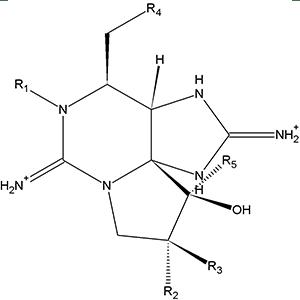 Saxitoxins